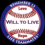 team-wtll-baseball-decal