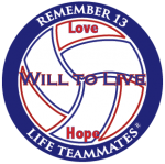wtl-decal-volleyball